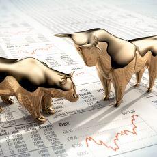 Borsa Yatırımcısı Olmaya Karar Verenlerin Geçeceği Muhtemel Yollar