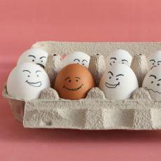 Kahverengi Yumurta Neden Beyaz Yumurtadan Daha Pahalıdır?