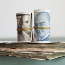 Dolar Neden Yükselir ve Neden Düşer?