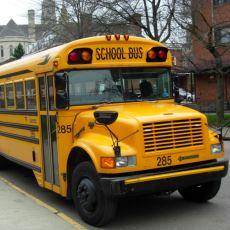 Amerikan Filmlerindeki Sarı Okul Otobüsü, Nasıl ve Neden Sarı Oldu?