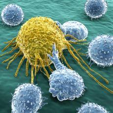 Kanser Hücreleri Vücutta Nasıl Oluşur ve Nelerden Beslenirler?