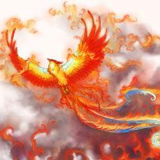 Bayraklara Simge Olmuş, Türk Mitolojisindeki Sınırsız Bilgeliğe Sahip Olarak Nitelenen Hükümdar Tuğrul Kuşu