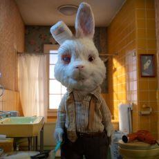 Kozmetik İçin Kobay Yapılan Bir Tavşanı Anlatan Çarpıcı Kısa Film: Save Ralph