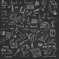 Okulda Öğrenilmiş Unutulmaz Bilgiler