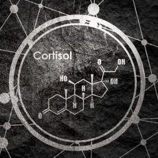 Stresin Neden Ölüme Bile Yol Açabileceğinin Bilimsel İzahı Olan Hormon: Kortizol
