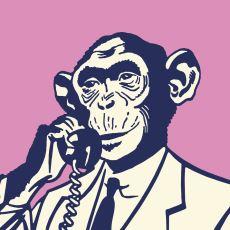 Homo Sapiens, Nasıl Oldu da Zaman İçinde Konuşabilme Özelliği Kazandı?