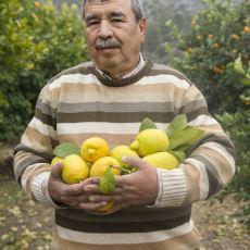 Tarım Ülkesi Türkiye, 126 Ülkeden Hangi Gıdayı İthal Ediyor?