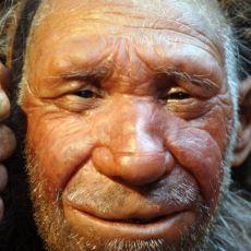 Homo Sapiens'in Avrupa'da Rastladığımız İlk Kalıntıları ve Bulundukları Yerler