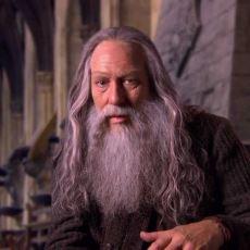 Albus Dumbledore'un Pek Bilinmeyen Kardeşi Aberfoth Dumbledore Kimdir?