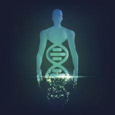 İnsan DNA'sını Araştırmaya Adanmış Devasa Proje: Human Genome Project