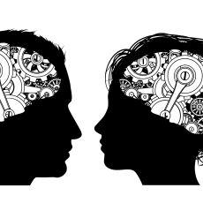 İkili İlişkilerimize Işık Tutan Kadın-Erkek Beyninin Kendi İçindeki Farklılıkları