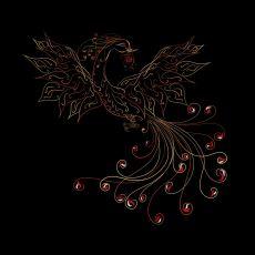 Mitolojide Neden Özellikle Kuş Simgesi Türlü Biçimlerde Kullanılmış?