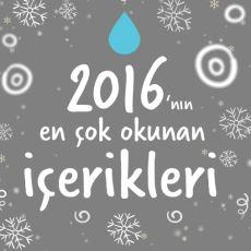 Bütün Bir Yılın Özeti Niteliğinde: 2016 Yılının En Çok Okunan Ekşi Şeyler İçerikleri