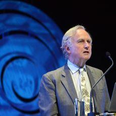Richard Dawkins'in Din ve Bilimi Birbirinden Ayıran Ufuk Açıcı Görüşü: NOMA