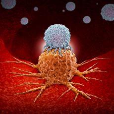 Kanseri Tedavi Etme İhtimali En Yüksek Olan Yöntemlerinden Biri: İmmünoterapi