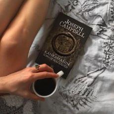 Her Hikayenin Aynı Kurguya Sahip Olduğunu Söyleyen Kitap: Kahramanın Sonsuz Yolculuğu