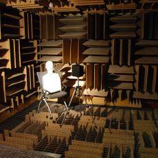 Çıldırtıcı Halüsinasyonlara Neden Olan Dünyanın En Sessiz Odası