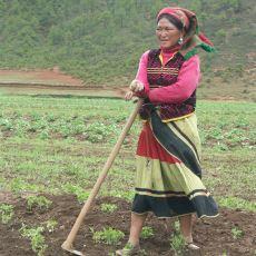 Evlilik Teklifini Kadınların Yapıp Tek Patronun Kadınlar Olduğu Topluluk: Mosuolar