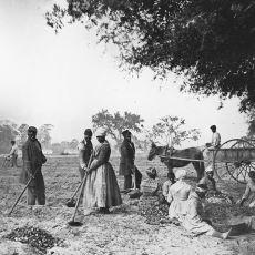 Amerika Birleşik Devletleri'nde Köleliğin Tarihçesi