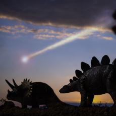 Dinozorları ve Tüm Canlıların %75'ini Yok Eden Ünlü Olay: Kretase-Tersiyer Kitlesel Yok Oluşu