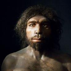 Tarihte Yaşamış İnsan Türleri ve İsimlerinin Anlamları