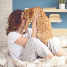 Çok Ufak Hareketlerle Evinizdeki Kedi Dostunuzun Hayatını Kurtarabilecek Önlemler