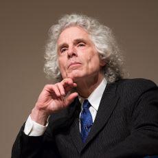 Bilişsel Bilimci Steven Pinker'ın Şiddetin Neden Azaldığına Dair Verdiği Konferansın Özeti