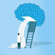 Edindiğimiz Bilgiler Beynimizdeki Hangi Bölgede Depolanıyor?
