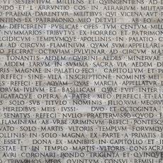 Türkçede de Karşılığı Bulunan Bazı Latince Deyişler