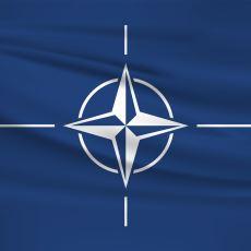 NATO Üyesi Olmayan Bazı Ülkeler, Zamanında Sovyetler ile Neden Sorun Yaşamadı?