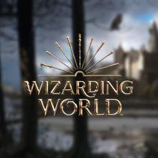 Harry Potter Serisinin Ait Olduğu Wizarding World Tam Olarak Nedir?