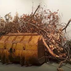 Geçmişten Günümüze Sanatın Sürekli Form Değişimi Geçirerek Farklılaşmasının Sebebi Ne?