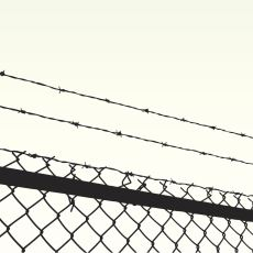 Kafka'nın, İnsanın Yarattığı Tuhaf Özgürlük Algısı Üzerinden Yaptığı Müthiş 'Dönüşüm' Tanımı