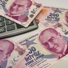 Tarihsel ve Siyasi Anekdotlarla Birlikte: Günümüz Türkiye Ekonomisinin Fotoğrafı