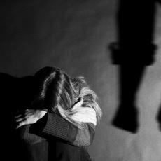 Bar Kavgasından Kız Kavgasına Kadar: Canlılar Problem Halinde Neden Şiddete Başvurur?