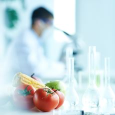 Organik Bileşiklerin Yalnızca Canlılardan Elde Edilebileceğini Savunan Görüş: Vitalizm