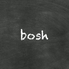 Türkçeden İngilizceye Geçen Bir Kelime: Bosh