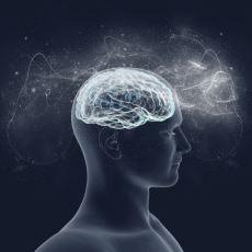IQ Testleri Hakkında Bilinmeyen ve Merak Edilenler