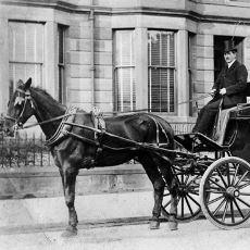 19. Yüzyıla Damgasını Vurmuş At Arabası Modelleri