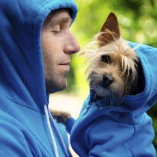 Evde Köpek Beslemek İnsana Ne Gibi Bir Fayda Sağlamaktadır?