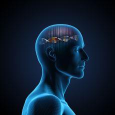 Duygularımızın Gücünün Düşündüğümüzden de Fazla Olduğunu Kanıtlayan Şaşırtıcı Deneyler