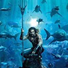 Sevenler ve Sevmeyenler Olarak Sinema Severleri İkiye Ayıran Aquaman'in İncelemesi