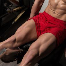 Vücudun Diğer Bölümleri İçin Çok Önemli Olan Quadriceps Kası Nasıl Geliştirilir?