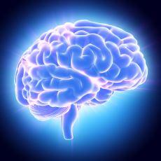 Beyin Gücünü Kullanarak İstediklerinizi Gerçekleştirmek İçin Yapmanız Gerekenler