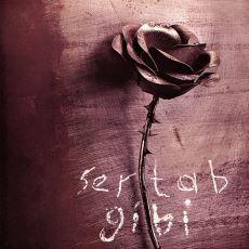 """Sertab Erener'in Belki de En Kaliteli Ama En Az Satan Albümü """"Sertab Gibi""""nin Hikayesi"""
