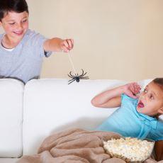 Küçükken Kardeşlere Yapılmış Anlamsız Eziyetler