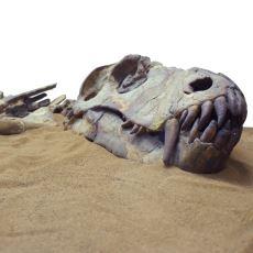 Dinozorları Gelecekte Tekrar Görebilmemiz Mümkün mü?