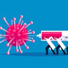Tüm Dünyanın Harıl Harıl Çalıştığı Koronavirüs Aşısında Son Durum Nedir?