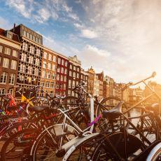 Amsterdam'a Gidip İlk Günden Kendini Bozan Gencin Trajikomik Hikayesi