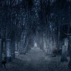 Ölüme Bakış Açınızı Epey Bir Genişletecek Olan Bazı Ölüm İstatistikleri